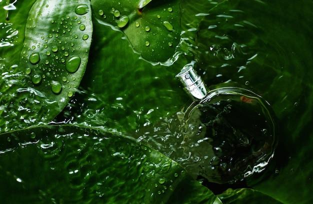 Parfumfles op vers groen blad met waterdalingen