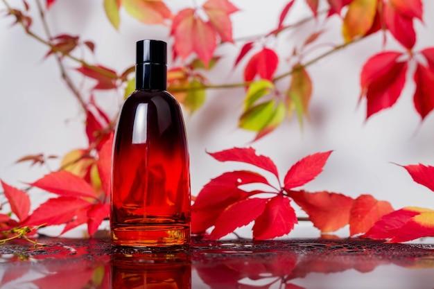 Parfumflesje en vintage geur op een zwart glazen oppervlak omgeven door herfstbladeren van wilde druiven en waterdruppels, aromageur, geurige cosmetica en eau de toilette als luxe schoonheidsmerk
