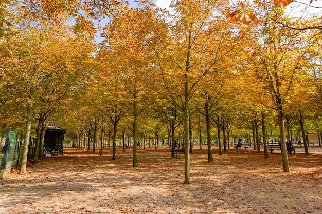 Parijs frankrijk 26 september 2017 herfst in de tuin van de tuilerieën in parijs frankrijk