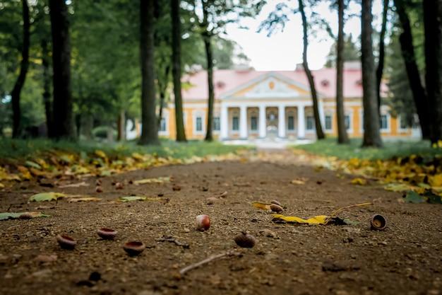 Park en landgoed in het dorp samchiki, district starokostyantynivsky, oekraïne. herfst