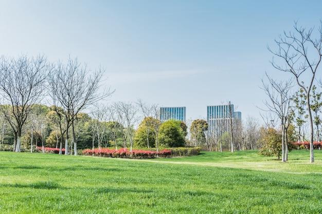 Park met een stad achter