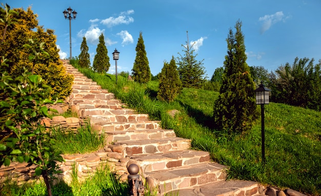 Park trappen vol vegetatie