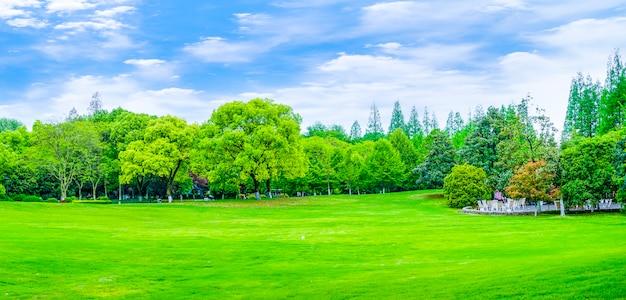 Parken bergen reflectie berg decoratie tuin