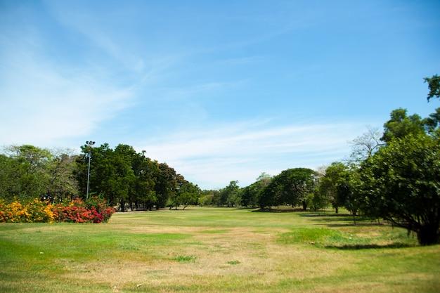 Parken en heldere hemel.