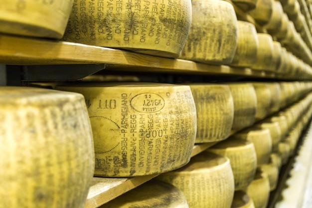 Parmigiano-kaasfabriek met de rijpende kaas