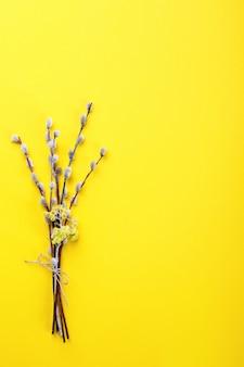 Pasen achtergrond. boeket van wilgen op een geel papier