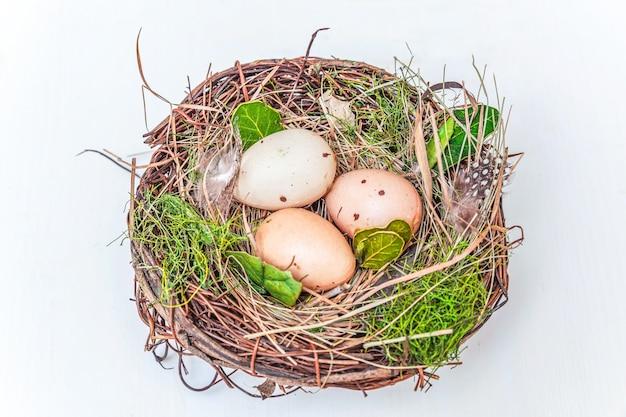 Pasen-decoratie met ei in nest met mos op rustieke witte houten achtergrond pasen-concept