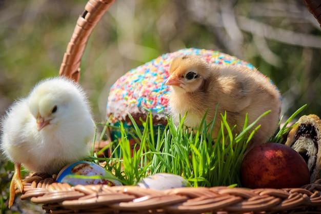 Pasen. pasen-decoratie in een mand. de lente. selectieve aandacht.
