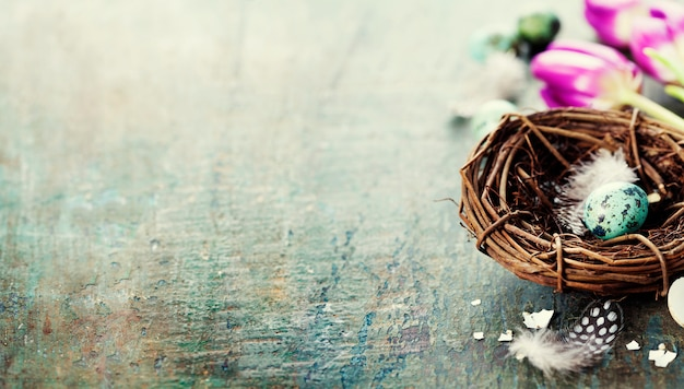 Pasen-samenstelling met tulpen en nest
