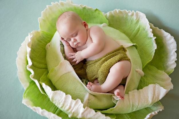 Pasgeboren babyjongen 3 maanden oud slaapt in groene kool. groenten.
