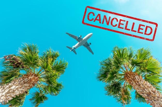 Passagiersvliegtuig vliegt boven de palmbomen tegen de blauwe hemel.