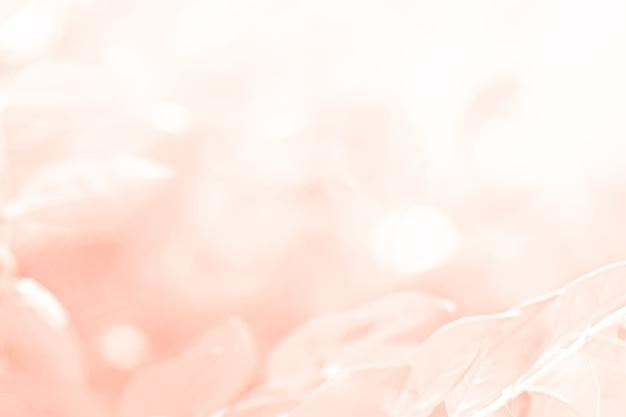Pastel roze oranje mooie lentebloem bloei tak achtergrond met gratis kopieerruimte