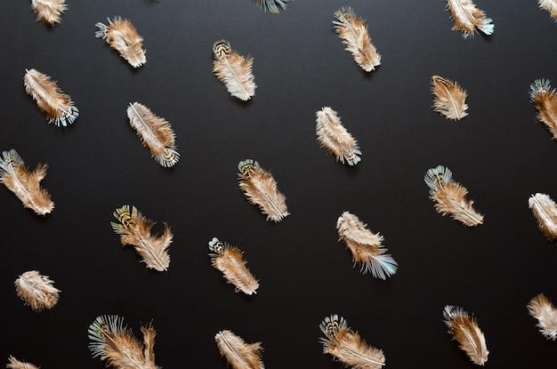 Patroon gemaakt van bonte veren op zwarte achtergrond