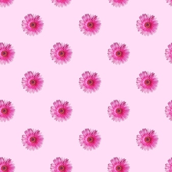 Patroon gemaakt van gerberabloemen op lichtroze achtergrond
