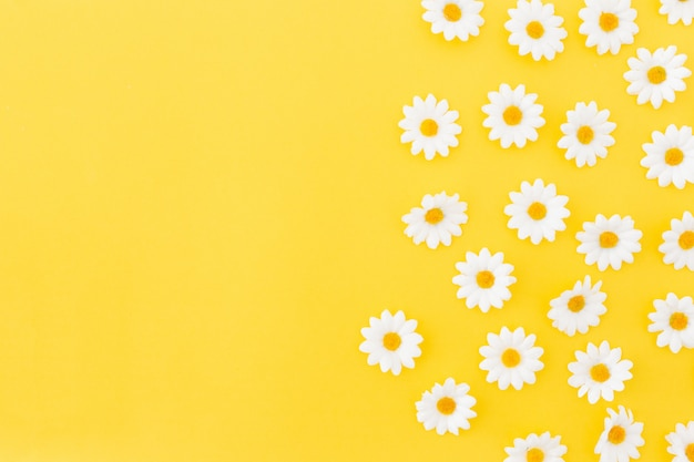 Patroon van daysies op gele achtergrond met ruimte aan de linkerkant
