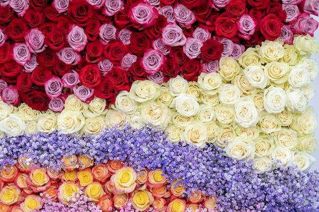 Patroon van rode, oranje en gele rozen.