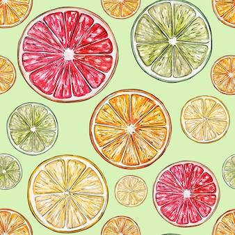 Patroon van sinaasappel- en grapefruitplakken. hand getekend aquarel illustraties.