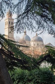Pauselijke basiliek van sint-antonius van padua omlijst door bomen