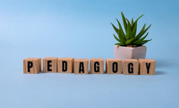 Pedagogiek woord geschreven op hout blok. pedagogietekst op blauw voor uw desing, concept.