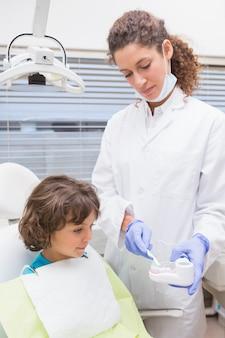 Pediatrische tandarts die weinig model van weinig jongen toont