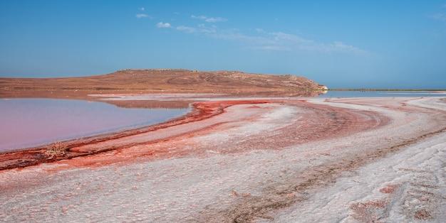 Pekel en zout van een roze meer koyash gekleurd door microalgen dunaliella salina