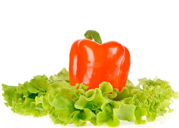 Peper en saladeblad op schotel die op witte ruimte wordt geïsoleerd