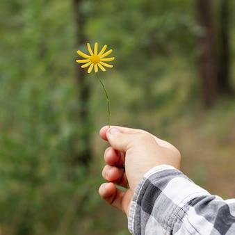 Persoon die kleine gele bloem houdt