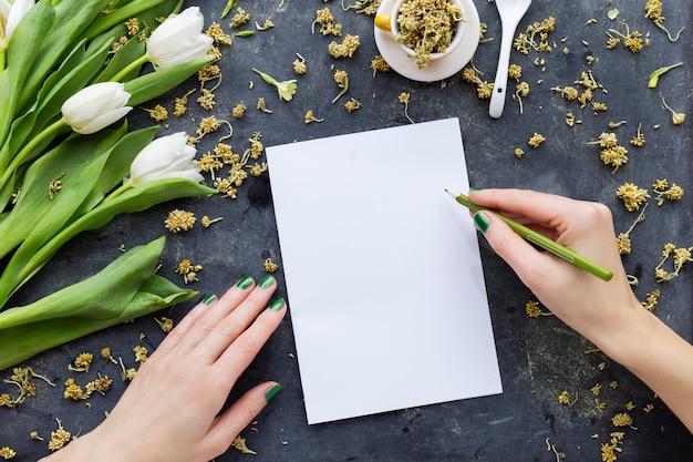 Persoon die op een witboek met een groen potlood dichtbij witte tulpen trekt
