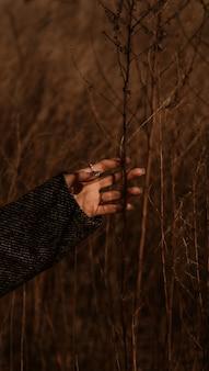 Persoon die overdag bruin gedroogd gras houdt