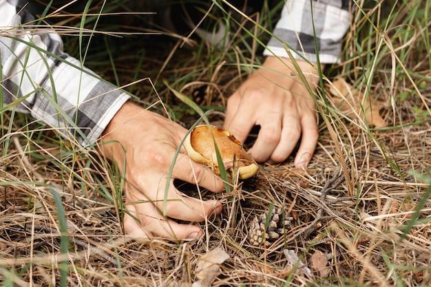 Persoon die paddestoel in aard verzamelt