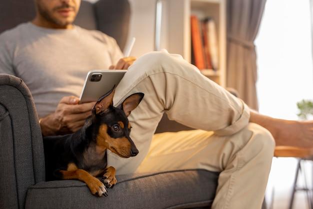 Persoon die thuis werkt met hond