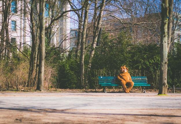 Persoon gekleed in een beer pak zittend op een bankje