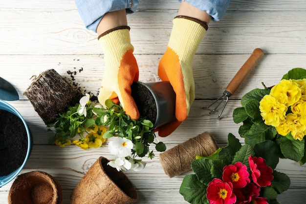Persoon greep pot op houten tafel met tuingereedschap, bovenaanzicht