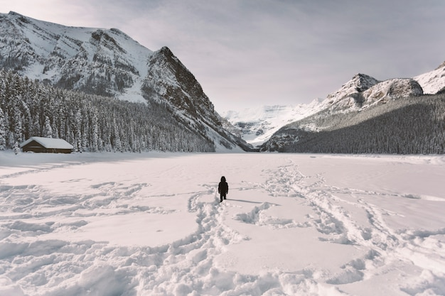 Persoon in sneeuwvallei in bergen