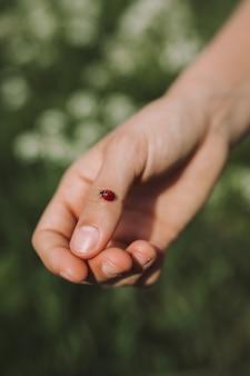 Persoon met een lieveheersbeestje