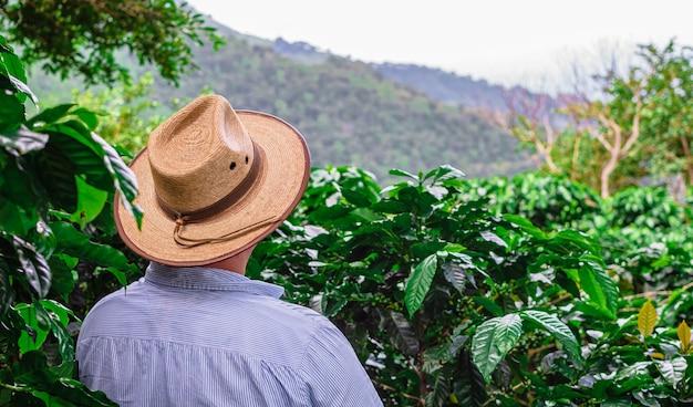 Persoon met hoed in de tuin