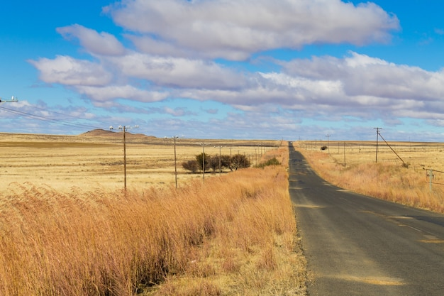 Perspectiefweg van oranje vrijstaat. op weg naar karoo, zuid-afrika. afrikaans landschap. reis achtergrond