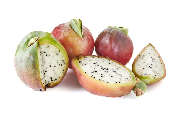 Peruaanse appelcactus fruit geïsoleerd op een witte achtergrond. wetenschappelijke naam cereus repandu