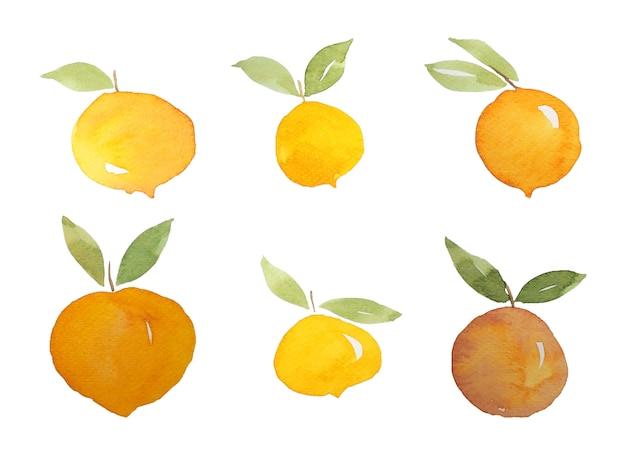 Perzik appel fruit aquarel schilderij
