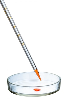 Petrischaal die op wit wordt geïsoleerd