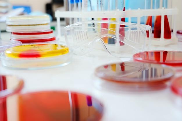 Petrischalen in het laboratorium