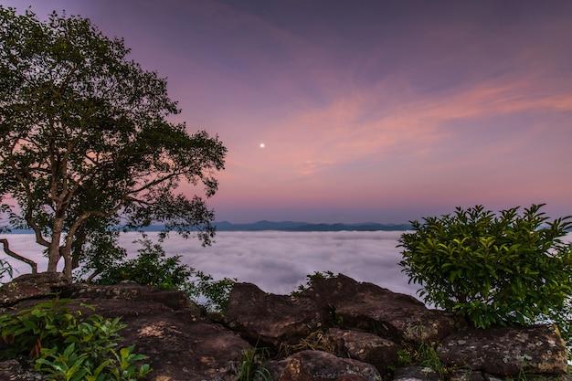 Pha-chom-mok, landschapsoverzees van mist op de berg in nongkhai-provincie thailand.