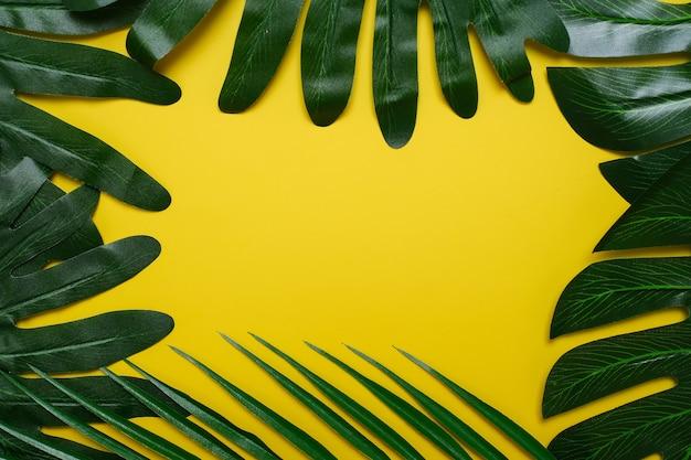 Philodendron tropische bladeren op gele kleur achtergrond minimale zomer