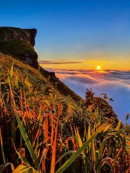 Phu chi fa en mist bij zonsopgang in de provincie chiang rai, thailand