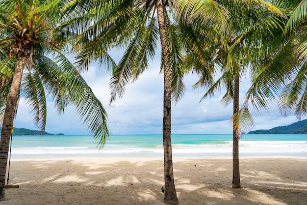 Phuket patong beach zomer strand met palmbomen rond in patong beach phuket eiland thailand, mooi tropisch strand met blauwe hemelachtergrond in het zomerseizoen kopieer de ruimte.