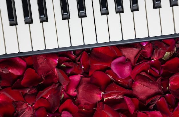 Pianosleutels met rode roze bloemblaadjes, geïsoleerde, hoogste mening, exemplaarruimte. romantisch concept.