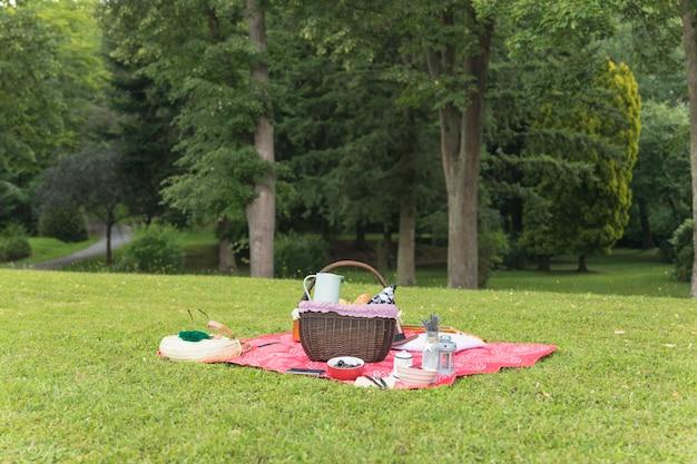 Picknick die op deken over groen gras plaatst