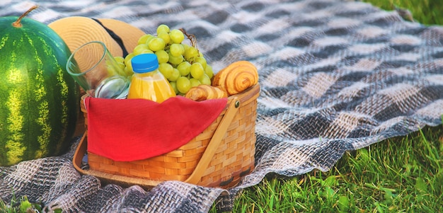 Picknick in de natuur fruit en watermeloen