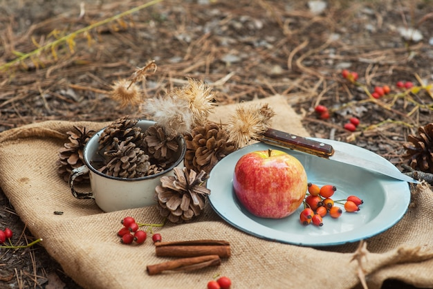 Picknick in een dennenbos. een metalen vintage schaal met een appel en rozenbessen op een dorpstafelkleed met kegels eromheen.