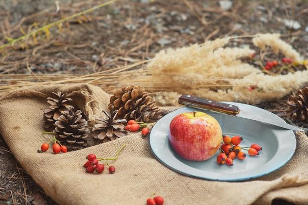 Picknick in een dennenbos. een metalen vintage schaal met een appel, rozenbessen en een mes op een dorpstafelkleed